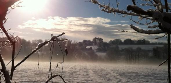 snowy field (c) Anna Riddell