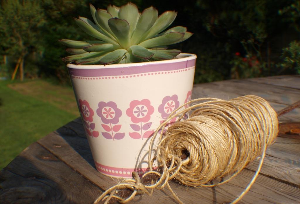 DIY Twine Succulent Pot | Anna International