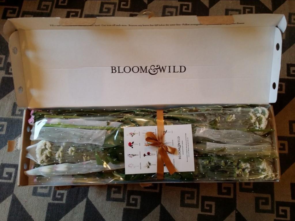 Bloom&Wild Review   Anna International