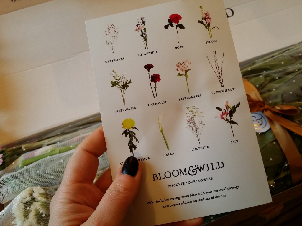 Bloom&Wild Review | Anna International