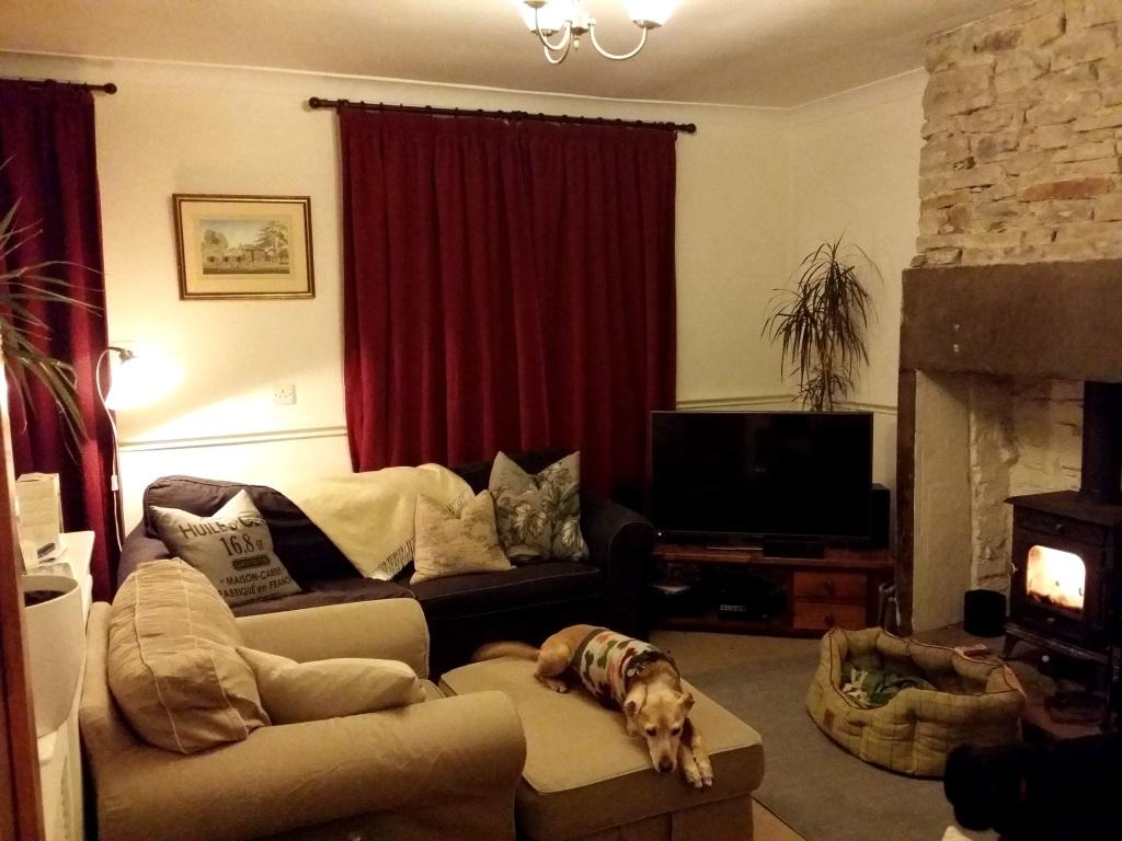 New Home: First Steps | Anna International