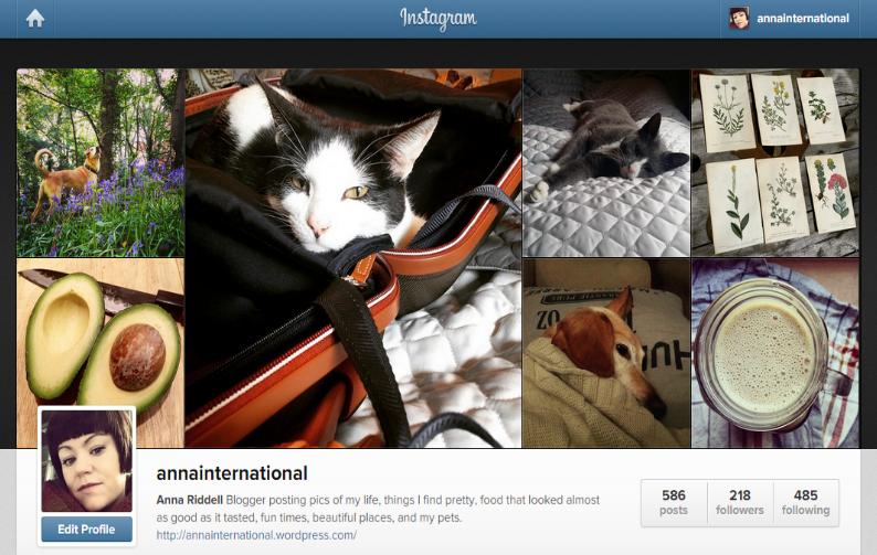 Anna International on Instagram